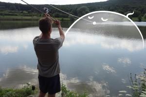 tabor Ryby, rybky, detičky