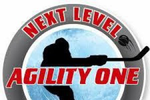 tabor Agility one summer hockey camp 2018