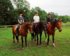 tabor Red Horse, LETO V SEDLE 2016, denný tábor
