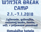 Winter Break Camp 2018