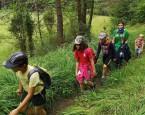 tabor Tajomstvo šepkajúceho lesa